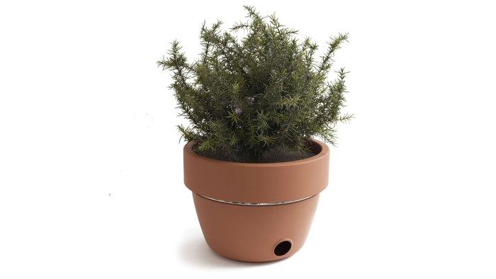 BBQグリルになる植木鉢 Hot pot BBQ