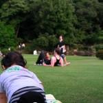 新宿御苑の芝生