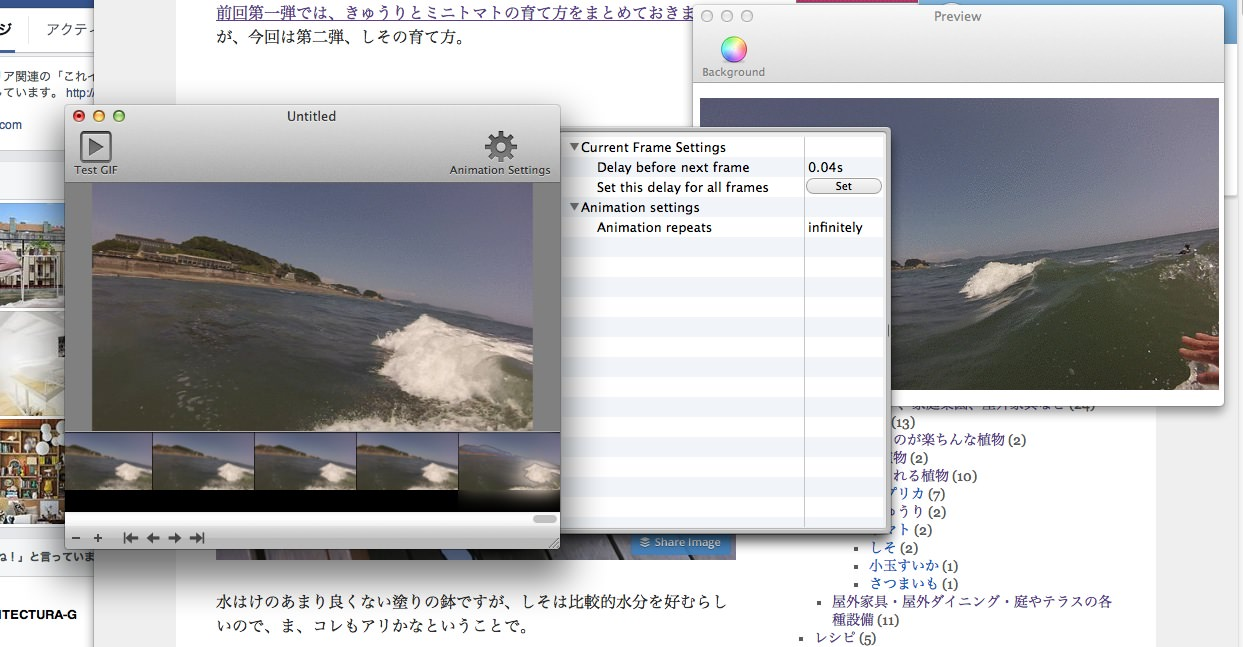 GIF AnimatorでGoPro HD HERO3のサーフィン動画をFlashに