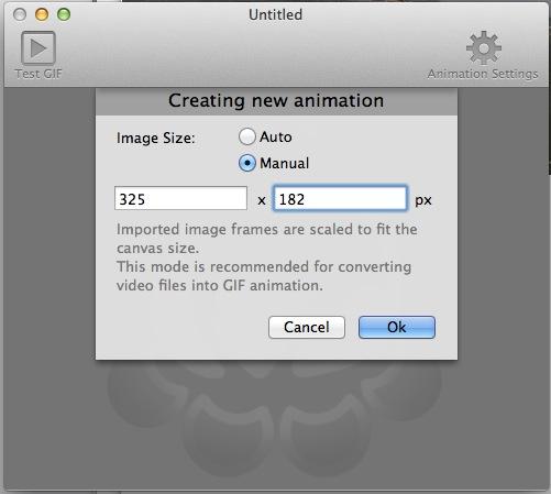 GIF Animatorの起動時にサイズを設定