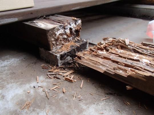 腐った枕木・大引きの表面を剥がしてみるとボロボロと剥がれる